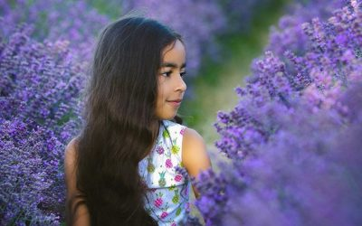 Lavender – Mini Sessions